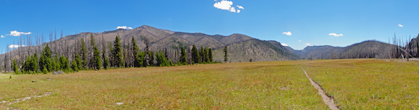 Warm Springs Meadow Pano